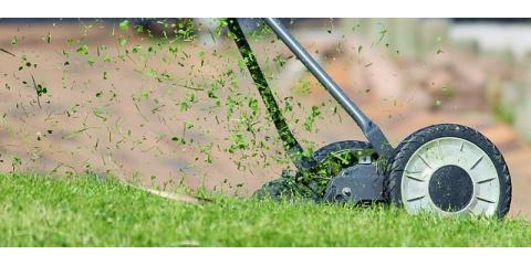 Why Is Summer Lawn Care Important?, Hinesville, Georgia