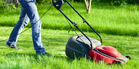 3 Ways to Prepare a Lawn for Spring, Dothan, Alabama