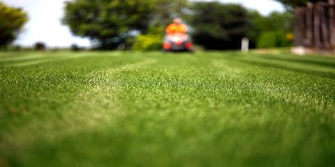 Loveland's Lawn Company Offers Professional Tips on When to Mow, Loveland, Ohio
