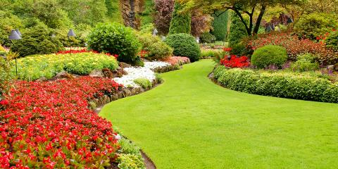 3 Lawn Care Steps for the Spring, New Market, North Carolina
