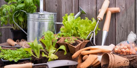 4 Key Trends That Are Changing Gardening Practices, Saltillo, Nebraska