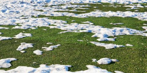 Guide to Lawn Maintenance in the Winter, Seymour, Connecticut