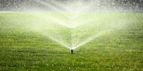 5 Lawn Maintenance Tips for a Beautiful Yard, Ewa, Hawaii