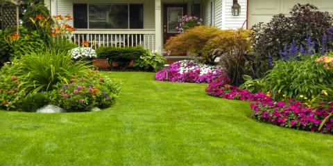Green Grass of Alaska: Why the Right Lawnmower Matters, Anchorage, Alaska