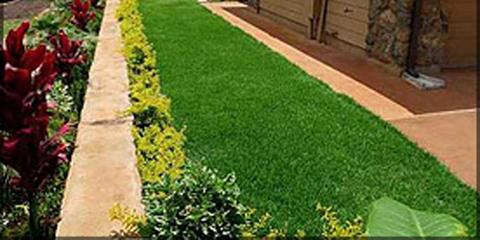 Get The Most Out of Your Lawn With Expert Care From Lawntastic Hawaii, Ewa, Hawaii