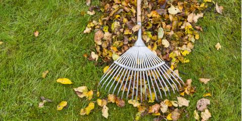 The Most Important Fall Lawn Care Steps, Enterprise, Alabama