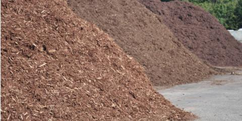 3 Reasons Why You Should Spread Mulch, Le Roy, New York