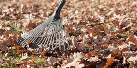 Should I Rake My Leaves? Our Custom Landscape Experts Explain, Xenia, Ohio