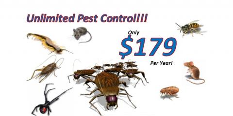 SWAT is now InspectorUSA Termite & Pest Control—Same Owner, Same Great Service, Lexington-Fayette, Kentucky