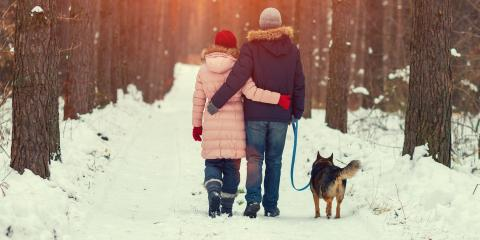 Winter Tips for Walking Your Dog on Asphalt, Lexington-Fayette, Kentucky