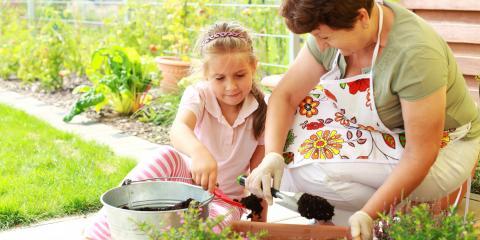 A Beginner's Guide to Gardening, Lexington-Fayette, Kentucky