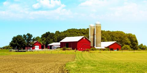 What to Consider When Shopping for the Most Suitable Farm Insurance, Licking, Missouri