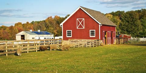 What Does Farm Liability Insurance Cover?, Licking, Missouri