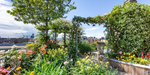 3 Reasons to Plant a Rooftop Garden, Lincoln, Nebraska