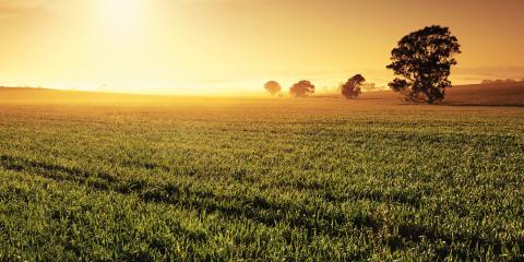 What to Ask When Looking at Farmland for Sale, Lincoln, Nebraska