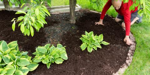 4 Benefits of Incorporating Mulch Into Your Business's Landscape, Lincoln, Nebraska