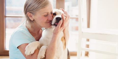 How Can a Pet Help Improve My Mental Health?, Lincoln, Nebraska