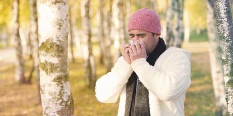 How To Prevent Fall Allergies Indoors, Stevens Creek, Nebraska