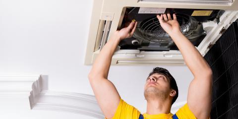 3 HVAC Tips for Pet Owners, Lincoln, Nebraska