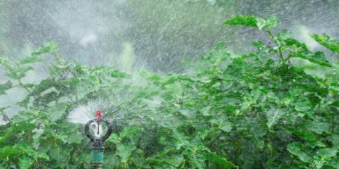 5 Benefits of Installing an Irrigation System, Lincoln, Nebraska