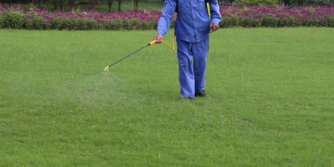 5 Lawn Treatments to Keep Your Yard a Cut Above the Rest, Lincoln, Nebraska