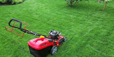 When Is the Best Time for Lawn Fertilizer?, Saltillo, Nebraska