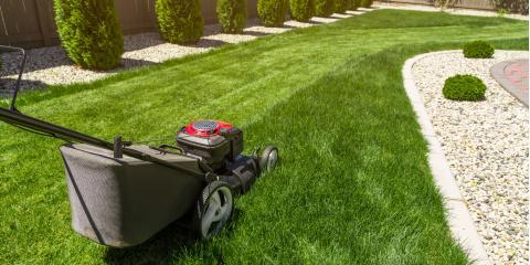 3 Common Lawn Pests, Saltillo, Nebraska
