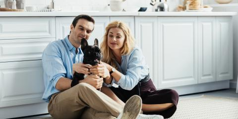 How to Choose an Apartment-Friendly Dog Breed, Lincoln, Nebraska