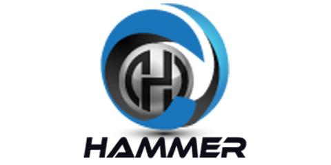 Hammer Fiber Optics Holdings Corp Begins Network Deployment in Sierra Leone & Dominica, Piscataway, New Jersey