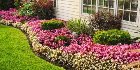 3 Easy Ways to Add Color to Your Landscaping, Danley, Arkansas