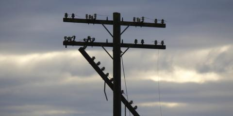 3 Common Causes of Power Outages, Northeast Jefferson, Colorado