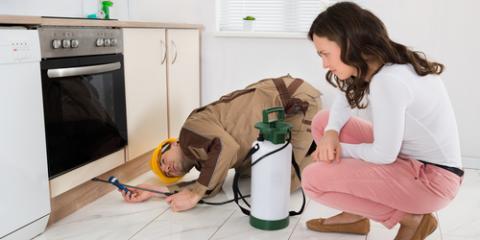3 Major Reasons You Should Seek Pest Control Services, Enterprise, Alabama