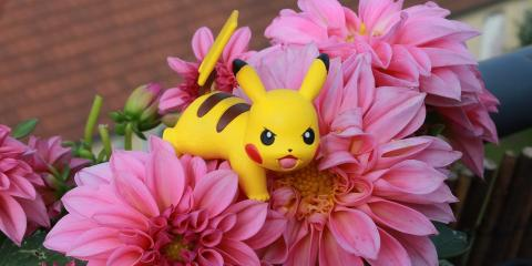 Kahului Pokemon Masters: Head to One of the Best Local Restaurants for a Break , Kahului, Hawaii