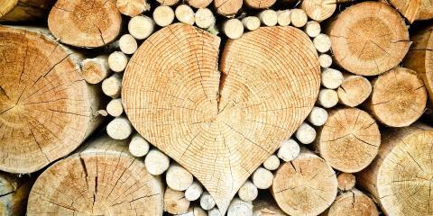 5 Types of Tree Logs, Midway, Georgia