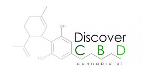 For Low-Risk & Effective Seizure Treatment, Visit DiscoverCBD.com Today, Elsmere, Colorado