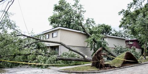 Rumpke Restoration Introduces Storm Damage Cleanup, Springdale, Ohio