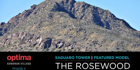 Elevate Your Life! Check Out The Spectacular Views of These New Luxury Apartments, Scottsdale, Arizona