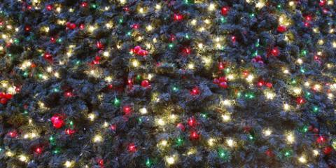 Stay at Top NYC Luxury Hotel & Enjoy the Rockefeller Center Christmas Tree Lighting, Manhattan, New York