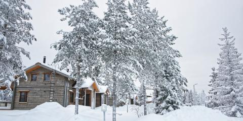 How Winter Weather Causes Tree Emergencies, Macedon, New York