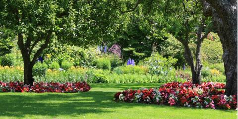 5 Design Tips for a Low-Maintenance Lawn, Macedon, New York