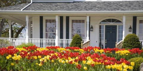 Madison's Wildlife Removal Experts Offer Pest Prevention Tips for Spring, Fitchburg, Wisconsin