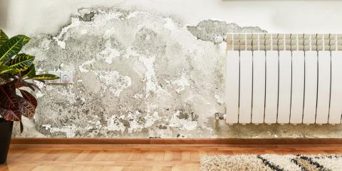 3 Tips for Conducting Inventories of Water-Damaged Possessions for Insurance, Foley, Alabama