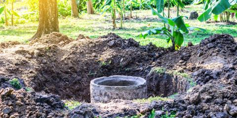 The Do's & Don'ts of Landscaping With a Septic System, Maui County, Hawaii