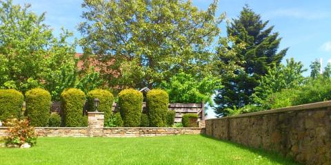 Improve Your Landscaping With Professional Tree Trimming Services, Marinette, Wisconsin