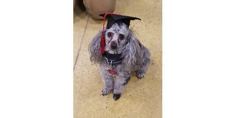 Marley Graduates!, Wisconsin Dells, Wisconsin