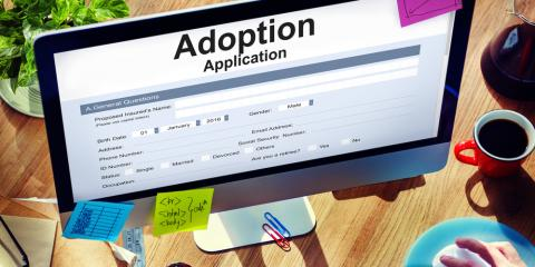 What Does an Adoption Law Attorney Do?, Martinsburg, West Virginia