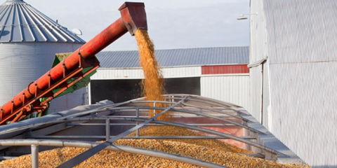 How Screw Conveyors Benefit the Grain Drying Process, Lincoln, Nebraska
