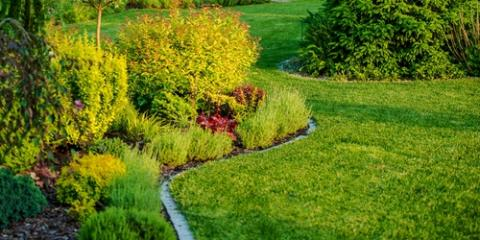 How to Protect Your Landscaping From Frost, Stallings, North Carolina