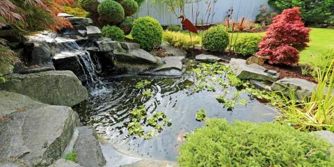 3 Steps to Build a Pond in Your Yard, Maui County, Hawaii