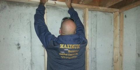 When You Need A Termite Inspection, Call Maximum Termite & Pest Control, Tate, Ohio